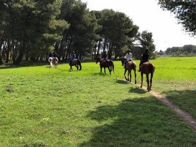 Passeggiata a cavallo (1h), Lecce