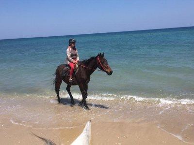 Passeggiata a cavallo (2h), Lecce