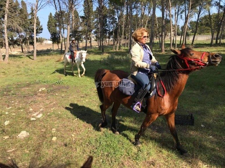 Passeggiata a cavallo nella macchia mediterranea