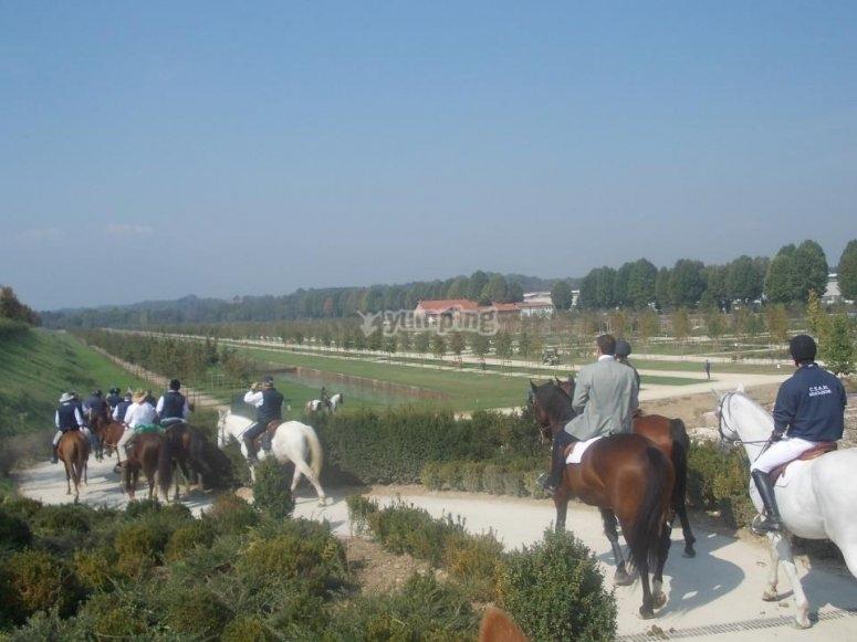 Escursione a cavallo nel verde