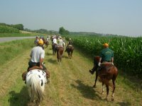 Giro a cavallo sui laghi di Avigliana (3h)