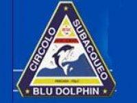Circolo Blu Dolphin