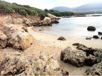 Passeggiate in spiaggia
