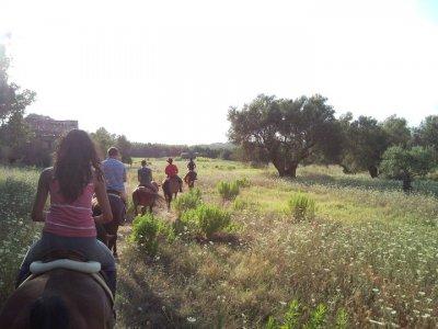Passeggiata a cavallo nel Parco del Pollino (1,5h)