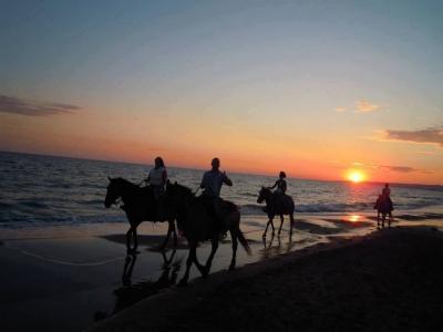 Passeggiata a cavallo sul mare 1 ora a Napoli