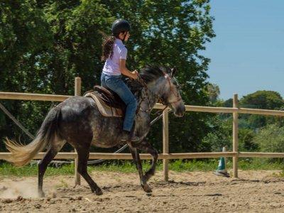 Passeggiata a cavallo di due ore a Lungotevere
