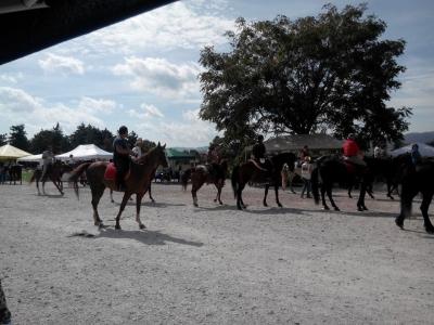 Passeggiata a cavallo di tre ore, Gubbio