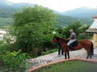 Scoprire la natura a cavallo