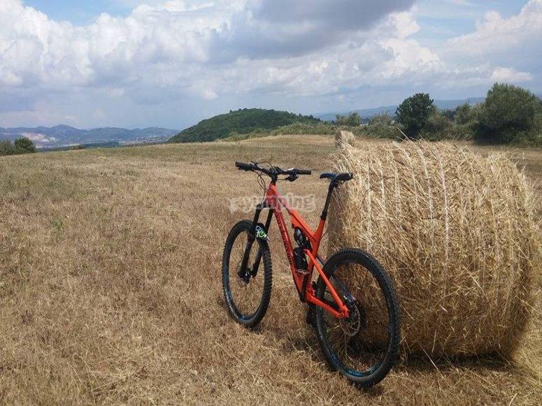 Pedalando in Toscana