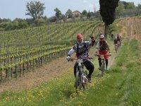 Gita in mountain bike a Vinci