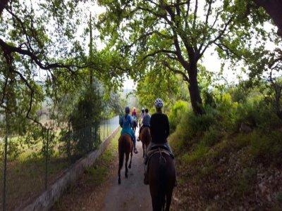 Agriturismo Pantalica Ranch