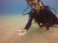Diving con brevetto in Grotta Azzurra da Scalea