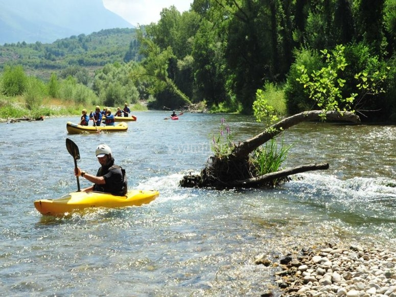 Divertimento nel fiume