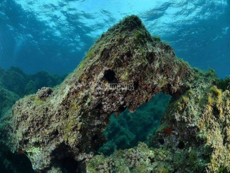 Scogliera marina