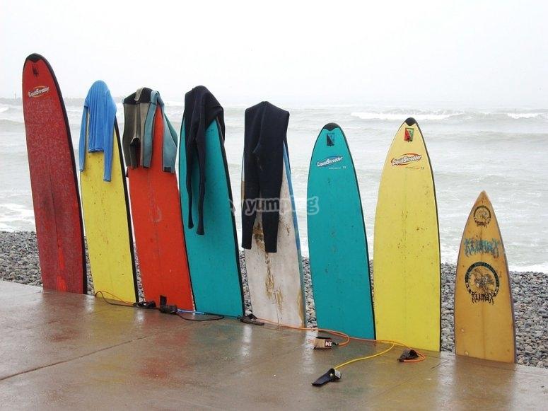 Le tavole da surf