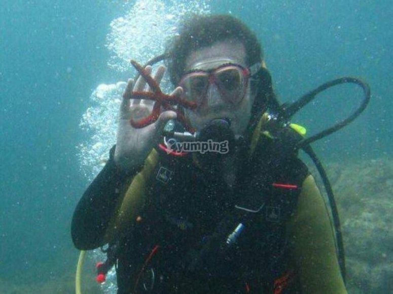 Con una stella marina