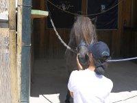 Tanti baci al nostro pony