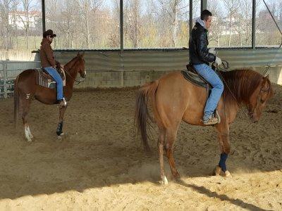 Lezione di equitazione western a Casalette (1h)