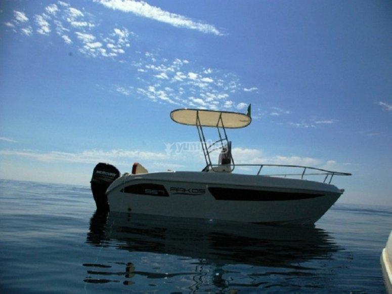 Nolleggio imbarcazione Arkos T Top per 15 giorni