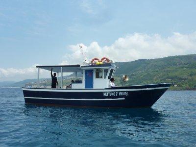 Escursione in barca Vibo Marina 7ore