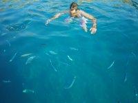 Sessioni di snorkeling