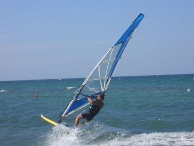 Cat Surf Windsurf