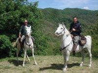 I nostri fantastici cavalli bianchi