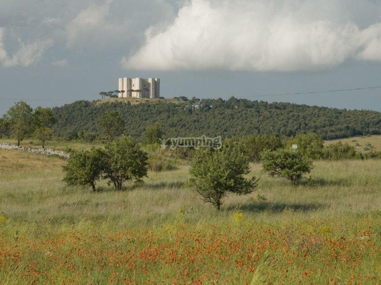 Venite a conoscere Castel del Monte