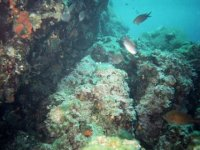 Salento seabed