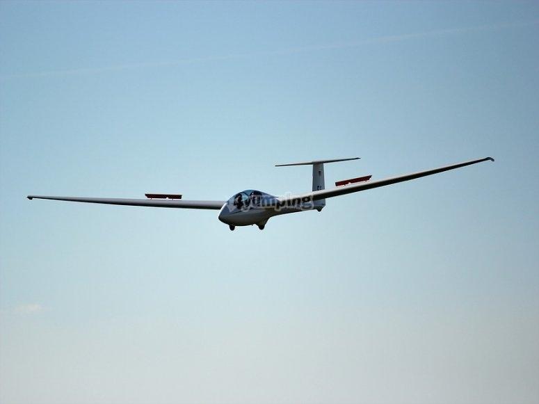 Glider in flight