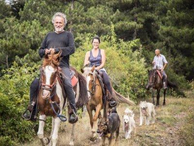 Weekend on horseback in the Lucan Apennines