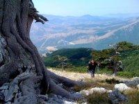 Scalando il monte
