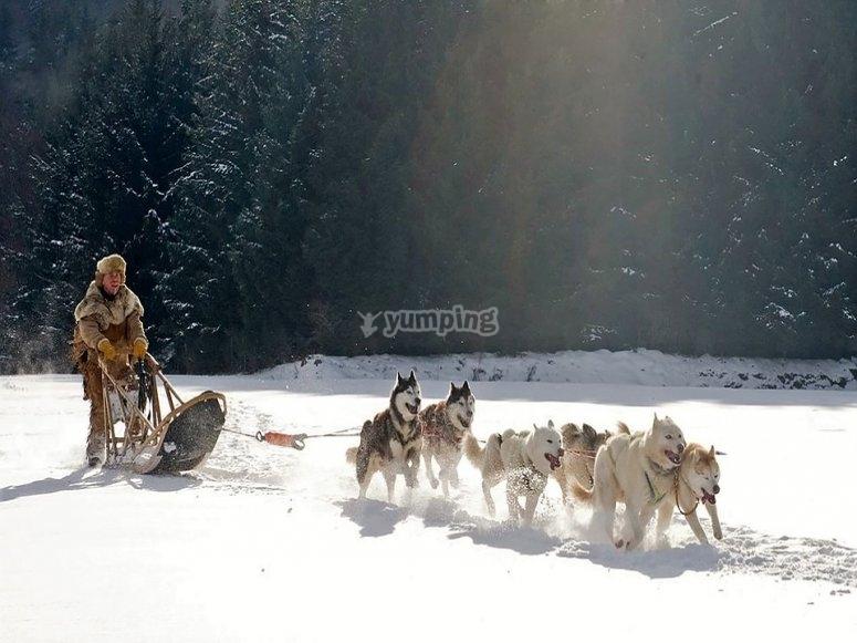 Correndo sulla neve