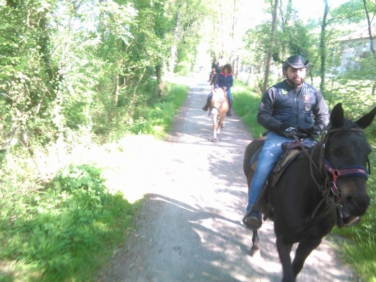 Excursion in the saddle