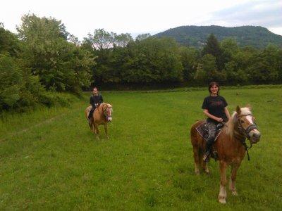 Passeggiata a cavallo di un'ora, Avigliana