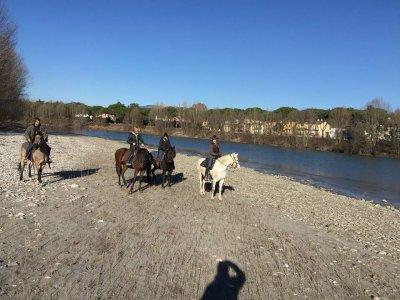 1 hour horseback ride, Verona