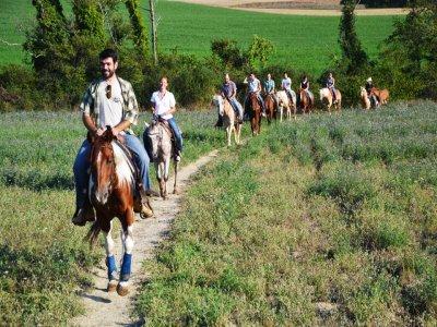 2-hour horseback ride, Verona