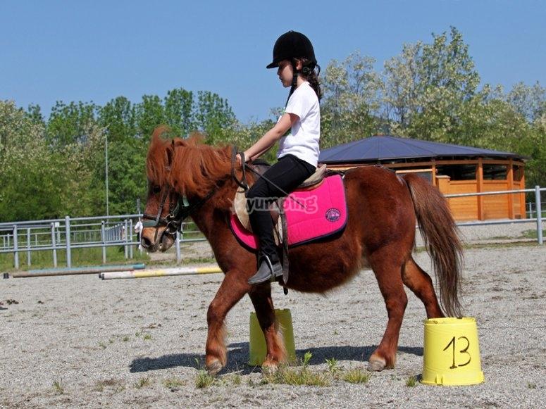 on the pony