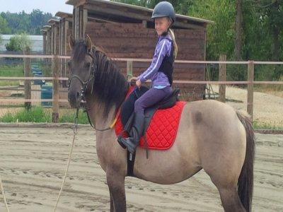 Lezione di pony per bambini di 40 minuti Verona