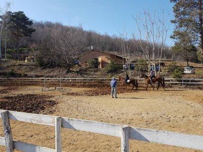 Lezione di equitazione, Colletta di Cumiana