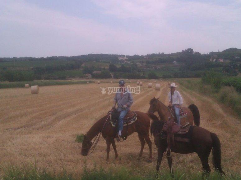 Passeggiando in sella ai cavalli