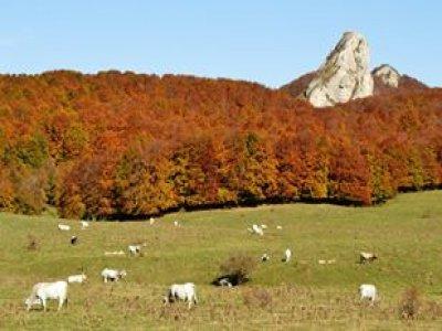 Itinerari d'Abruzzo MTB