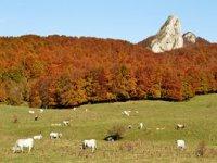 Escursioni Parco Nazionale della Majella