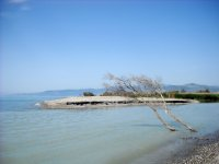 Costa Jonica