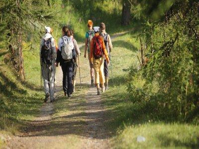 Apians Trekking