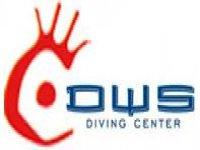 Dws Diving