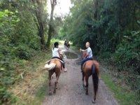 Nei boschi a cavallo