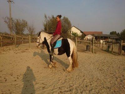 Sognatori a cavallo