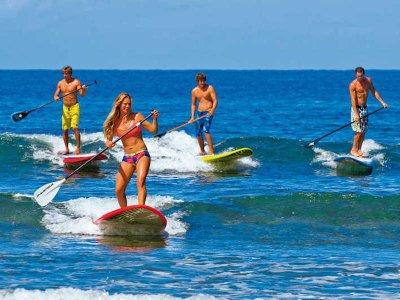Basty Surf
