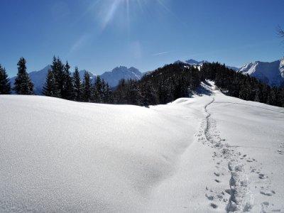 Scuola di Alpinismo e Sci Alpinismo Val di Sole Ciaspole